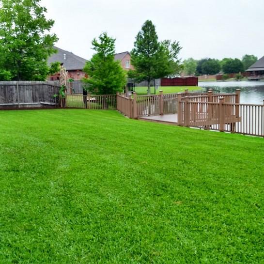 Травосмесь «Озеленитель»